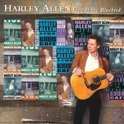 Stray Dogs And Alley Cats Song