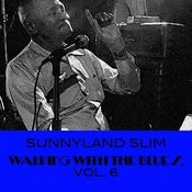 Walking With The Blues, Vol. 6 Songs