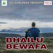 Bhailu Bewafa Song