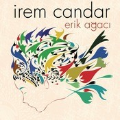 Erik Agaci Songs