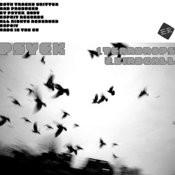 Teardrops/Birdcall Songs