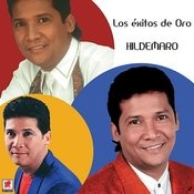 Los Exitos De Oro Songs