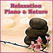 Relaxation Piano & Nature Songs