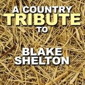 A Country Tribute To Blake Shelton Songs