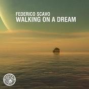 Walking On A Dream Songs