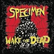 Wake The Dead Songs
