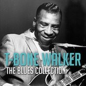 The Blues Collection: Sonny Boy Williamson Songs