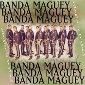Canciones De Mi Pueblo Songs