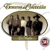 Tesoros De Coleccin Songs