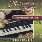 El Mecanico (Instrumental) Song