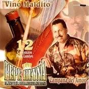 Campana Del Amor Song