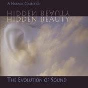 Hidden Beauty Songs