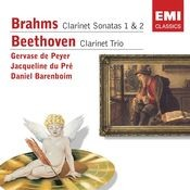 Clarinet Trio in B Flat, Op.11 (2006 Remastered Version): I. Allegro con brio Song