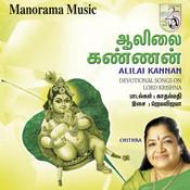 Alilai Kannan Songs