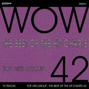 The Best Of The Hit Charts, Vol. 42 Songs