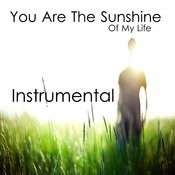 You Are The Sunshine Of My Life: Instrumental Songs