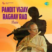 Pt Vijay Raghav Rao Flute Songs