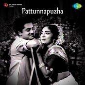 Pattunnapuzha Songs