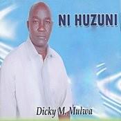 Ni Huzuni Songs
