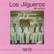 Rancheras Con Los Jilgueros Del Arroyo Songs