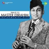 Tribute To Master Ebrahim Instrumental Hits Songs