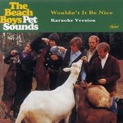 Wouldn't It Be Nice (Karaoke Version) Songs