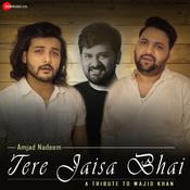 Tere Jaisa Bhai - A Tribute to Wajid Khan Song
