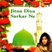 Jitna Diya Sarkar Ne Vol 9 Songs