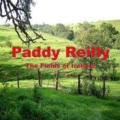 The Fields Of Ireland Songs