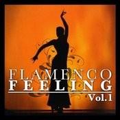 Flamenco Feeling Vol. 1 Songs