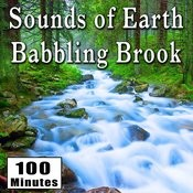 Sounds Of Earth: Babbling Brook Songs