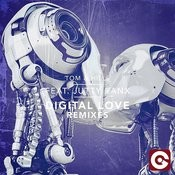 Digital Love (Truss Rod Remix) Song