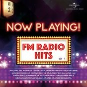 Now Playing! Fm Radio Hits, Vol. 1 Songs