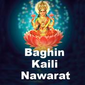Baghin Kaili Nawarat Songs