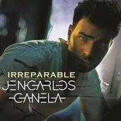 Irreparable Songs