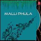 Naja Naja MP3 Song Download- Malli Phula Naja Naja Odia Song