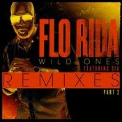 Wild Ones (feat. Sia) [J.O.B Rock Rework] Song