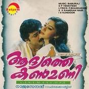Madhuvidhu raavukale mp3 song download aadyathe kanmani.
