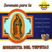 Serenata Para La Morenita Del Tepeyac Songs