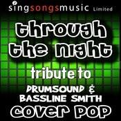 Through The Night (Tribute To Drumsound & Bassline Smith) [Karoake Audio Version] Songs