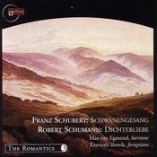 Schwanengesang, D.957: II. Kriegers Ahnung Song