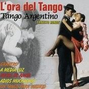Tu Voz Querida/Tango Argentino Song
