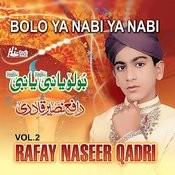 Ya shaheed-e-karbala by muhammad farhan ali qadri.
