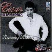 Romantico Y Ranchero Songs