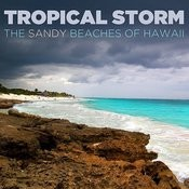 Tropical Storm: The Sandy Beaches Of Hawaii Songs