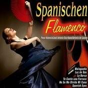 Spanischen Flamenco Songs
