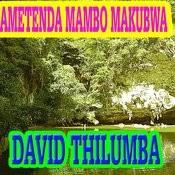 Ametenda Mambo Makubwa Songs