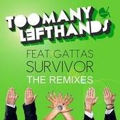 Survivor (The Remixes) Songs