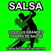 Les Plus Grandes Danses De Salon: Salsa Songs