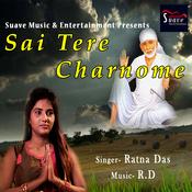 Sai Tere Charnome Song